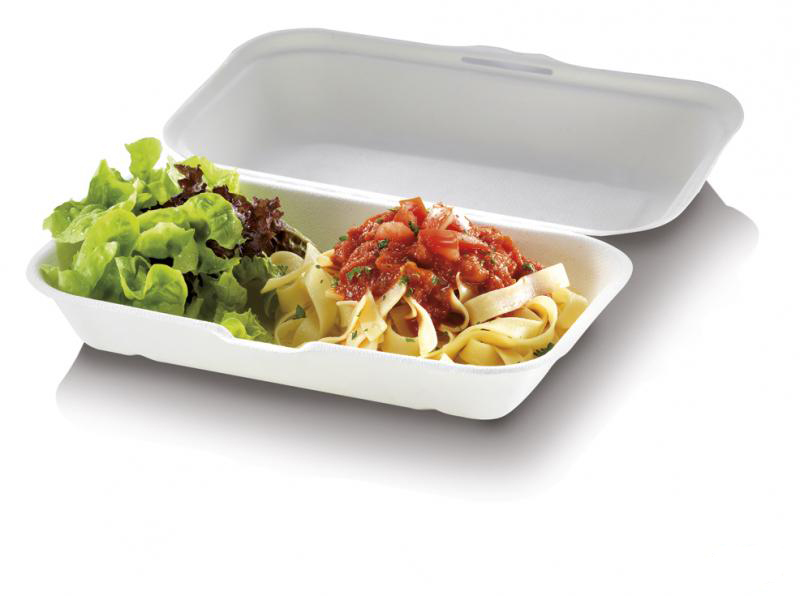 Food Box richiudibile in polpa di cellulosa 23,5x19,5x7,5 cm