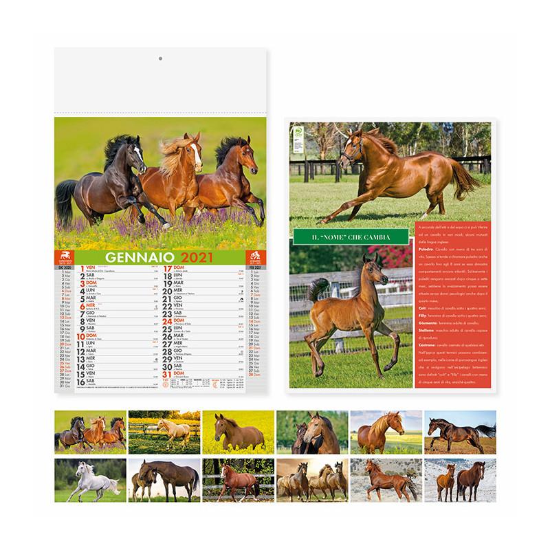 Calendari illustrati cavalli PA107